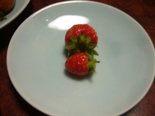 イチゴがなりました。。